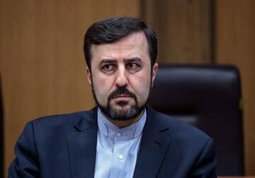 رد ادعای آزار جسمی بازرس زن آژانس در ایران / فیلم