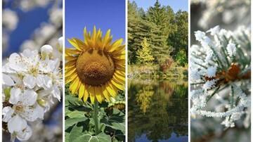 دلیل پیدایش فصلها چیست؟