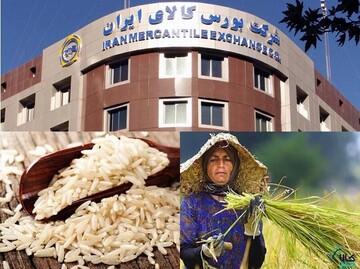با کد سهامداری در بورس برنج بخرید / جزییات