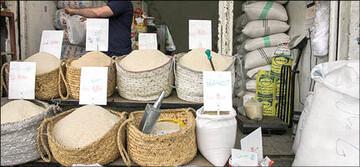 ارزانی برنج در راه است / توزیع ۱۰۰ هزار تن برنج وارداتی در بازار