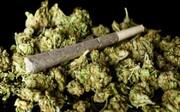 حقایق وحشتناک درباره عواقب خطرناک مصرف ماده مخدر «گُل» که با شنیدن آن شگفتزده میشوید!