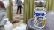 افزایش تولیدات واکسن برکت به ۱۴ میلیون دز
