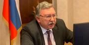 روسیه: گنجاندن مسائل منطقه در مذاکرات برجام را رد کردیم