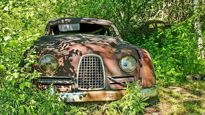 رانندگان خوش ذوق خودروهای خود را تبدیل به باغچه کردند / فیلم