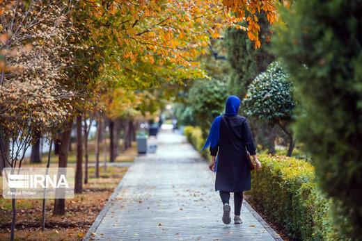 تحت تأثیر جو عمومی ادای دلتنگی در پاییز درنیارید! / ترفندهای داشتن حالخوب در پاییز