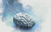 امیدواری محققان به کپی مغز انسان روی تراشه
