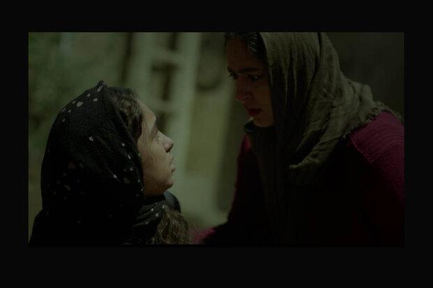 «مسخ در مسلخ» از جشنواره فیلم اسپانیا جایزه گرفت