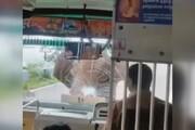حمله فیل عصبانی به یک اتوبوس در هند / فیلم
