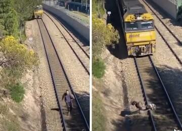 فیلمی دلهره آور از لحظه نجات سگ از روی ریل قطار