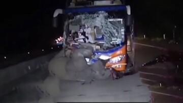 ویدیو دلخراش از برخورد شدید اتوبوس با فیل!