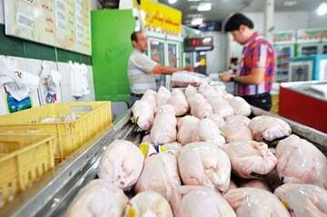 استفاده مرغداران از تریاک برای افزایش وزن مرغها تایید شد