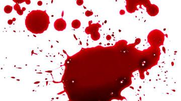 همسرکشی در قلعه نو / یک زن شوهرش را به طرز فجیعی کشت