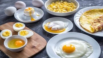 خواص شگفتانگیز تخم مرغ برای بدن؛ از کاهش چربی خون تا کاهش خطر ابتلا به سکته مغزی