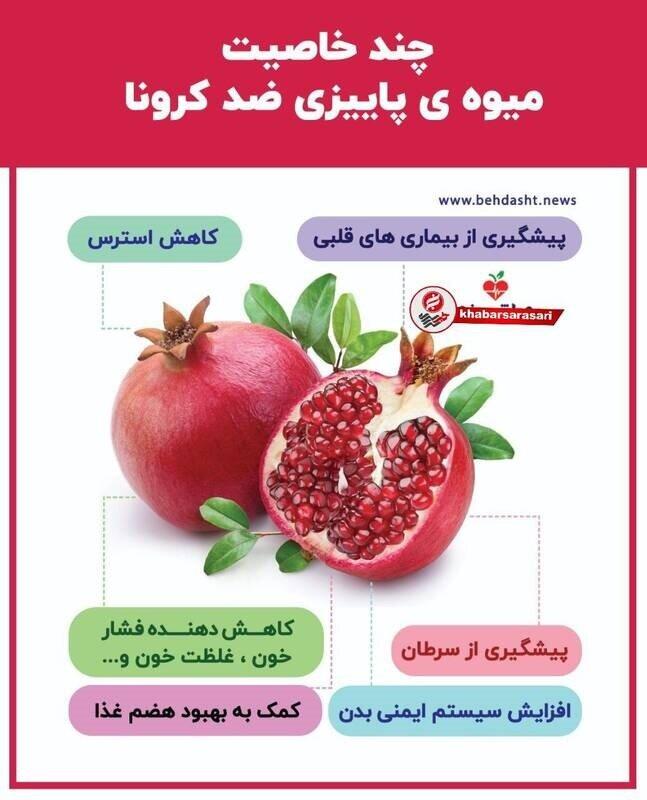 فواید باورنکردنی انار برای بدن که از آن بیاطلاعید!؛ از کاهش فشار خون تا تقویت سیستم ایمنی / عکس