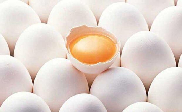 خواص شگفتانگیز روغن تخم مرغ بر روی پوست