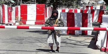 نگاه طالبان به شهادت/ اختلاف جنگجویان طالبان بر سر حوریان بهشتی! / فیلم