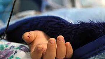 حادثه دلخراش در بجنورد / حرکات نمایشی خودروی پژو جان یک کودک را گرفت