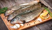 افزایش ۵۰۰ درصدی قیمت ماهی قزلآلا / هر کیلو ماهی قزلآلا چند؟