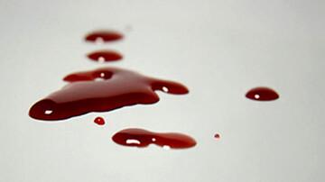 قتل هولناک مرد طلاساز تهرانی / باجناق حجت قاتل است؟