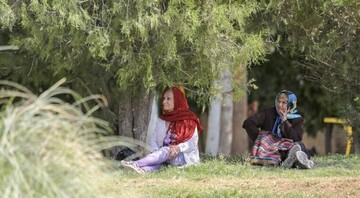 """""""ایران"""" رکورد دار سرعت کاهش نرخ باروری شد / ۳ استان پایینترین نرخ باروری را از آن خود کردند"""