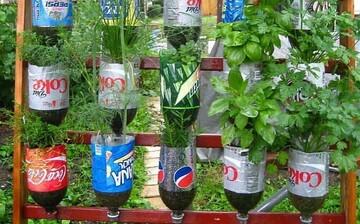 تولید پلاستیک گیاهی برای اولین بار