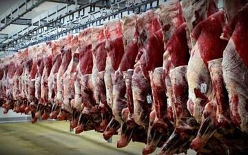 عرضه گوشت قرمز ۴۰ درصد افزایش یافت