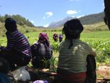 تا سال 2020 همه جمعیت فقیر روستایی چین از فقر نجات پیدا می کنند