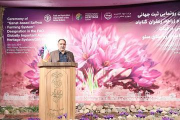 زراعت زعفران مبتنی بر قنات در گناباد به ثبت جهانی رسید