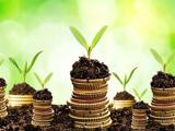 توسعه اقتصاد سبز؛ رویایی تعبیرشدنی