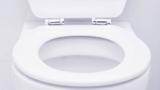 استفاده از کاور توالت فرنگی؛ خوب یا بد؟