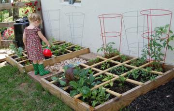 راهنمای باغبانی مربعی برای تازه واردها