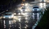 کرمان زیر آبِ بارش های بهاری/تصاویر