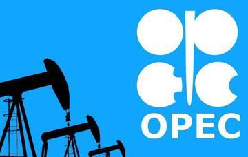 تاثیر سقوط قیمت نفت آمریکا بر سبد اوپک