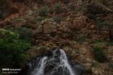 طبیعت بکر و زیبای بهاری الموت/سری سوم تصاویر