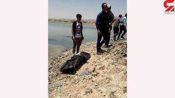 کشف جسد جوان افغان در فشافویه تهران