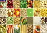 با این مواد غذایی در تابستان خنک شوید