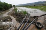 خسارت شدید باران به دور روستا در رامسر